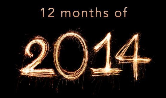 The 12 months of 2014