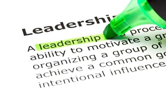 Joe's view: of NHS IT leadership