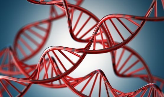 Work needed on genomic and genetic data sharing – NDG