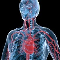 Cardiology 'slow to adopt imaging'