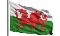 Quarter of practices link to Welsh SCR