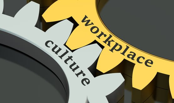 Workplace Culture image