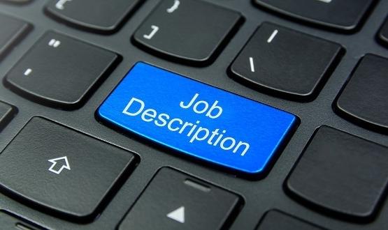 Faculty of Informatics launches standardised job description for CCIOs
